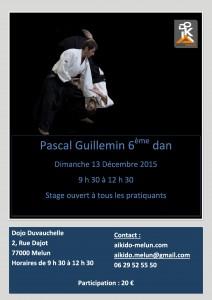 2015.12.13   Stage dirigié par Pascal Guillemin