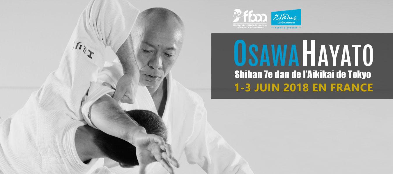 Osawa Shihan 2018 banner