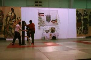 31.01.2015 | Gala des arts martiaux 2015